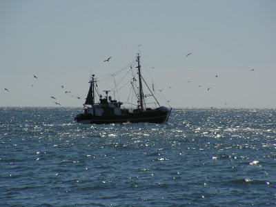 A trawler at the coastline of Rügen island, Baltic Sea area, Germany